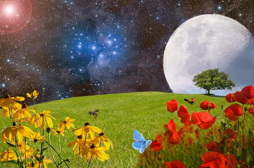 Comment la lune influence-t-elle le secteur agricole ?
